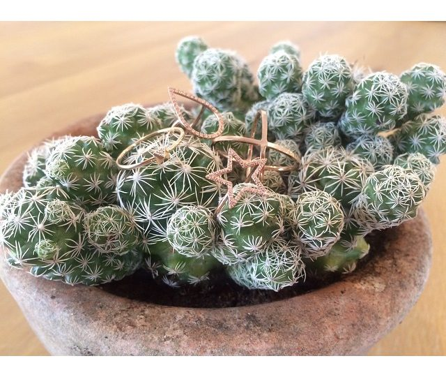 I think our pieces are warming up to the new office #cacti . #Saving #Water #AlexisJewelry #MadeinLA #Rosegold #Diamonds